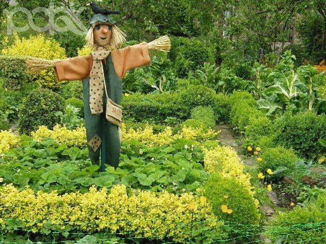 Чучело на огороде