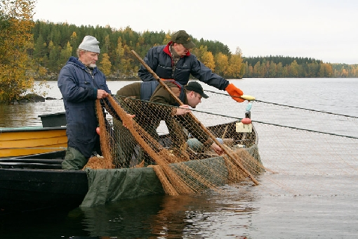 рыбалка бреднями на урале видео