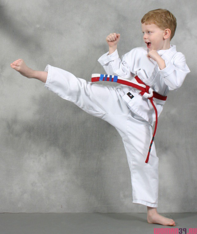 6 Things Your Sensei NEVER Told You About Karate