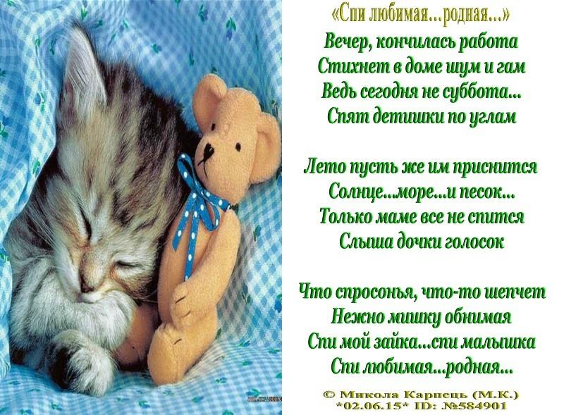 Все люди спят стих