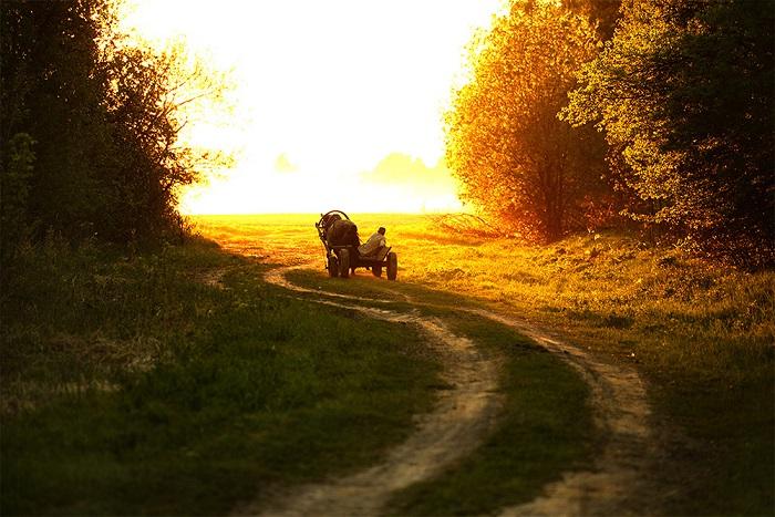 в белом поле по дороге мчится конь мой одноногий и на много-много лет