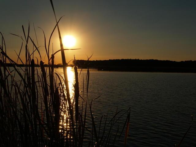 ночная рыбалка на озере