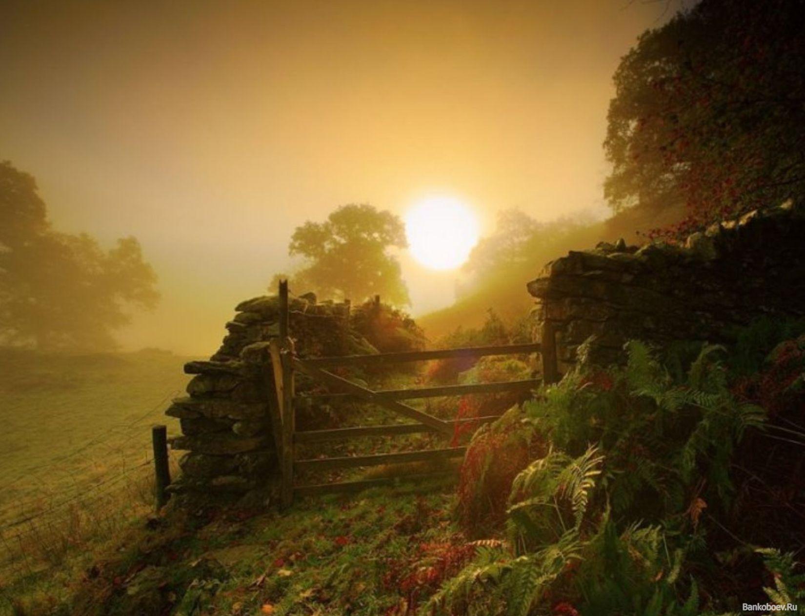Смотреть деревенское фото фото 316-888