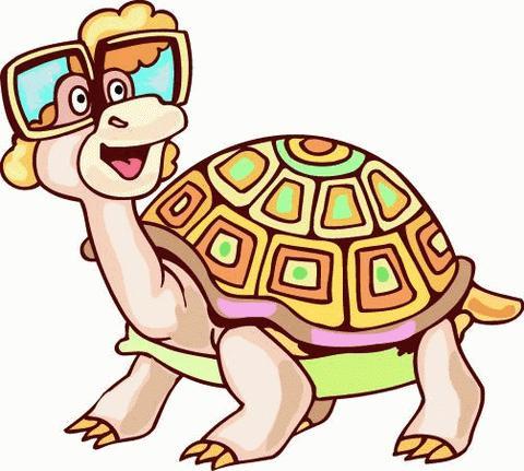 тортилла черепаха картинки
