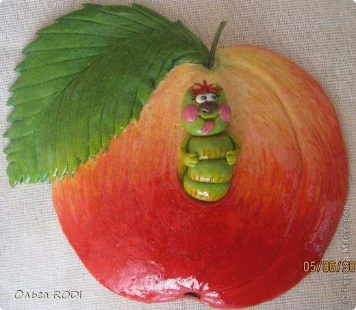 Вяленые помидоры в духовке рецепт с пошаговыми 9
