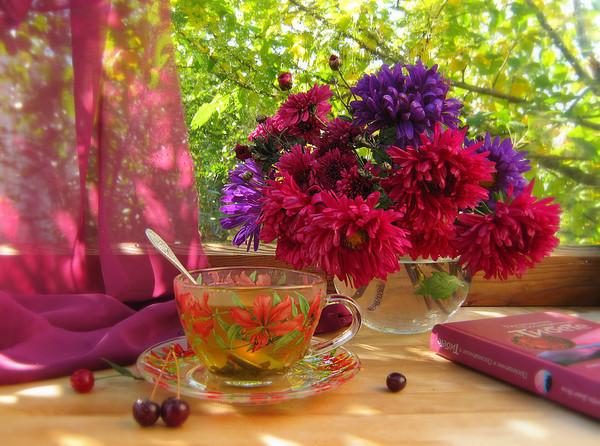 картинки на рабочий стол август цветы № 409674  скачать