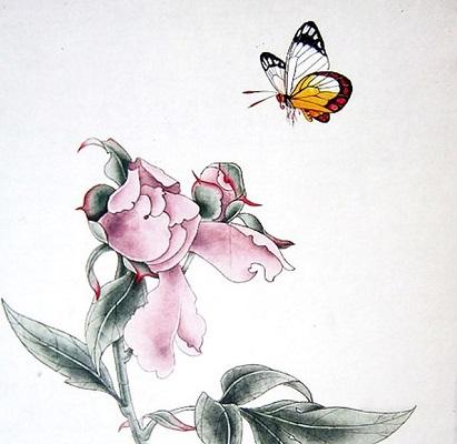 Японская бабочка на рисунках