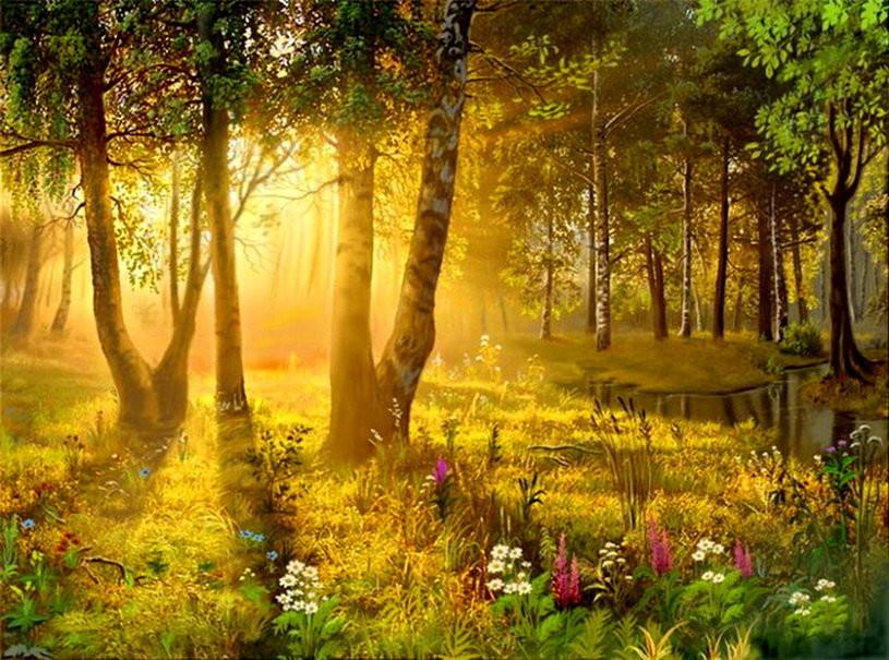 картинка сказочного леса летом коробки том