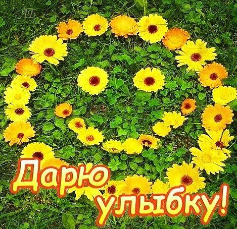 http://www.stihi.ru/pics/2015/10/17/6686.jpg
