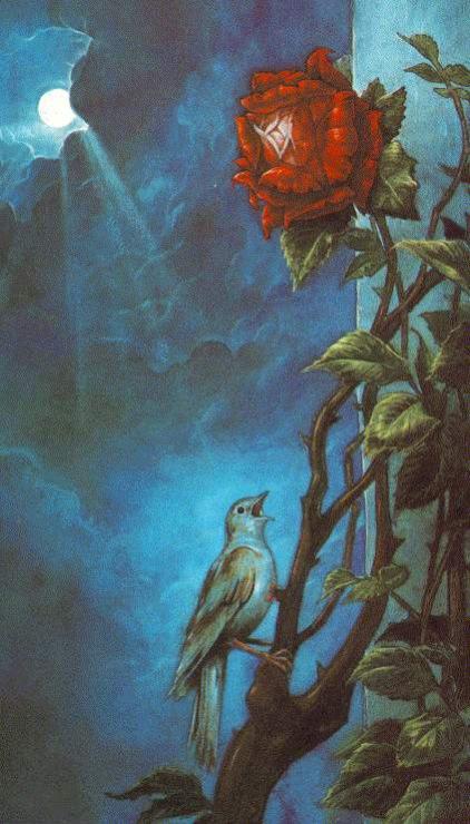 краткое содержание соловей и роза костюма Горка
