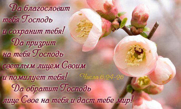 ac060e48f19a Спасибо Тебе... (Нина Емельянова)   Стихи.ру