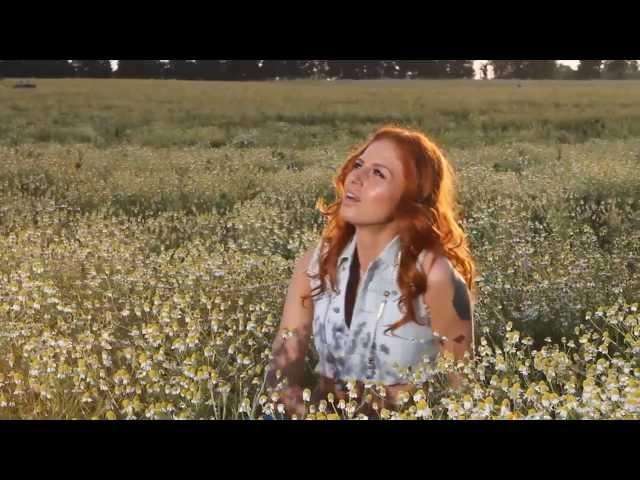 Песня ромашковое поле чили скачать