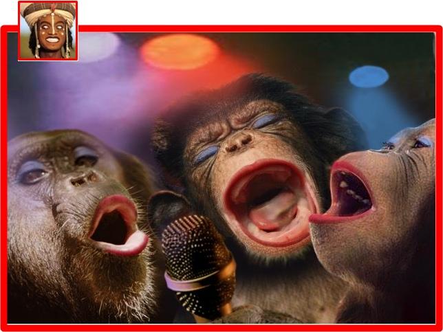Cute singing animals