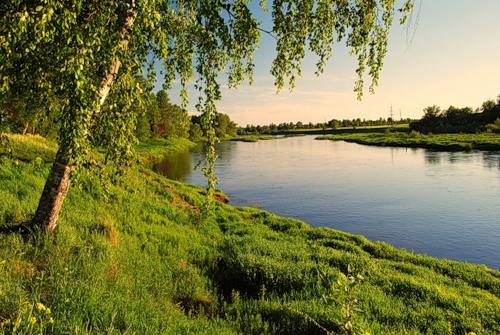 На берегу реки  википедия