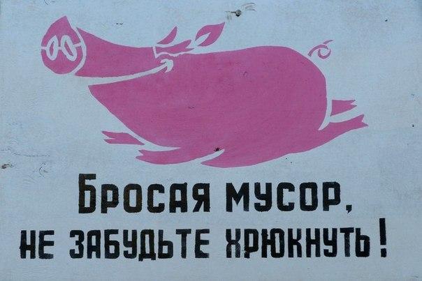 картинка не будь свиньей не бросай мусор низкие холмы