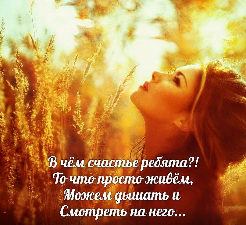 В чём счастье стих