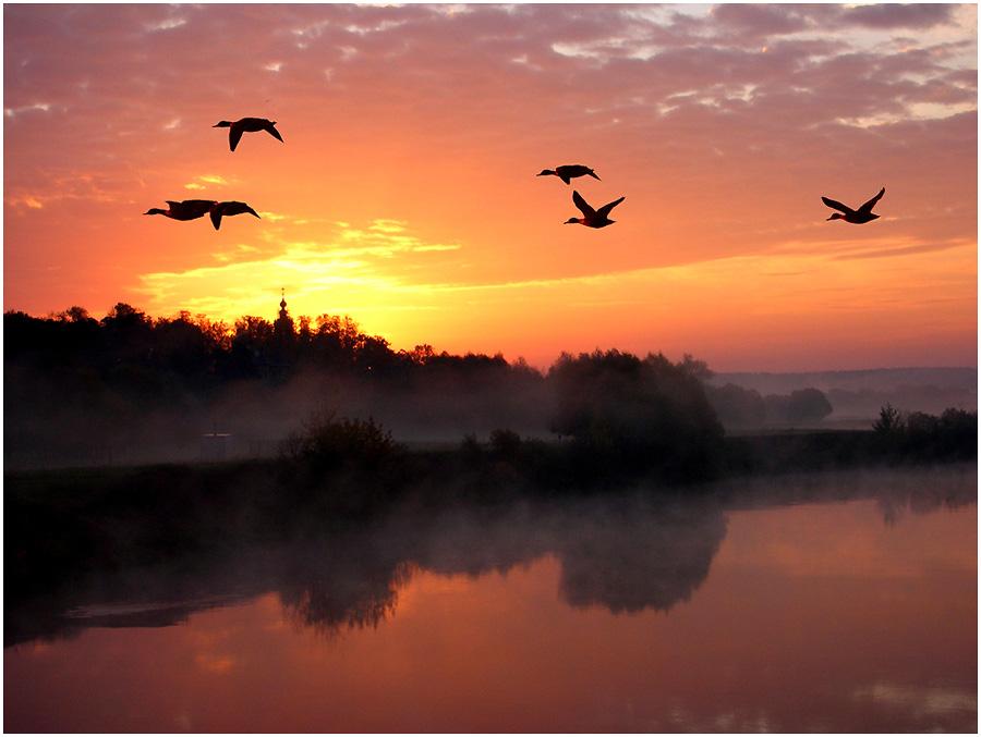 рассвет на москве реке картинки
