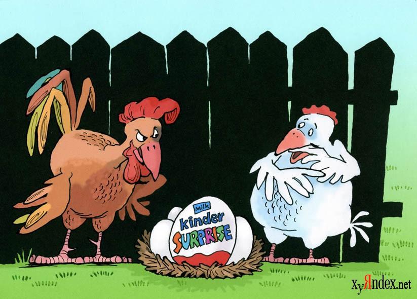 Картинки вертикальные, прикольные картинки про петуха и курицу