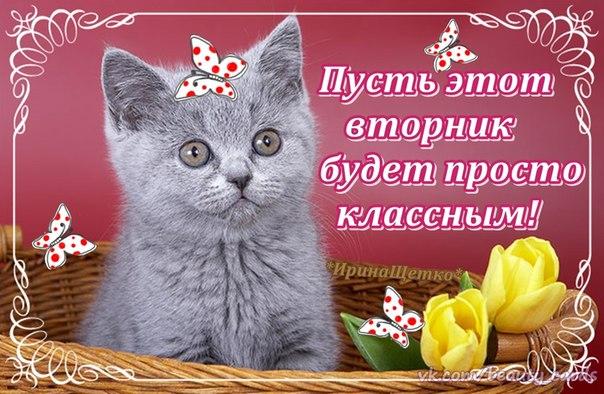https://www.stihi.ru/pics/2016/03/22/1530.jpg