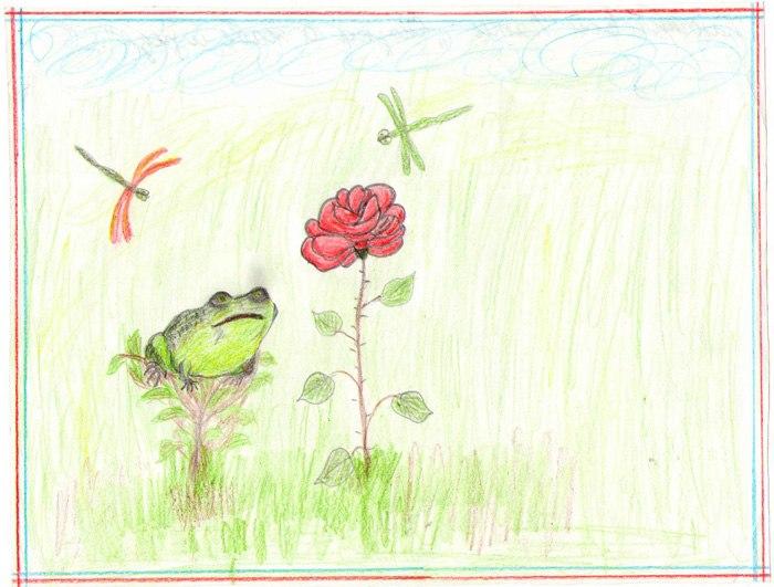 Нарисовать рисунок к сказке жаба и роза