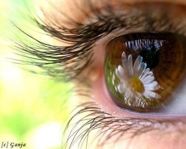 Фото карие глаза и цветы
