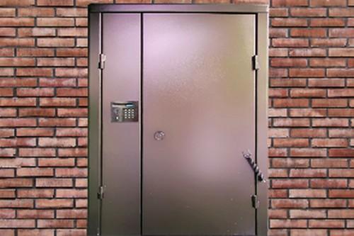 железные двери подъездные с домофоном