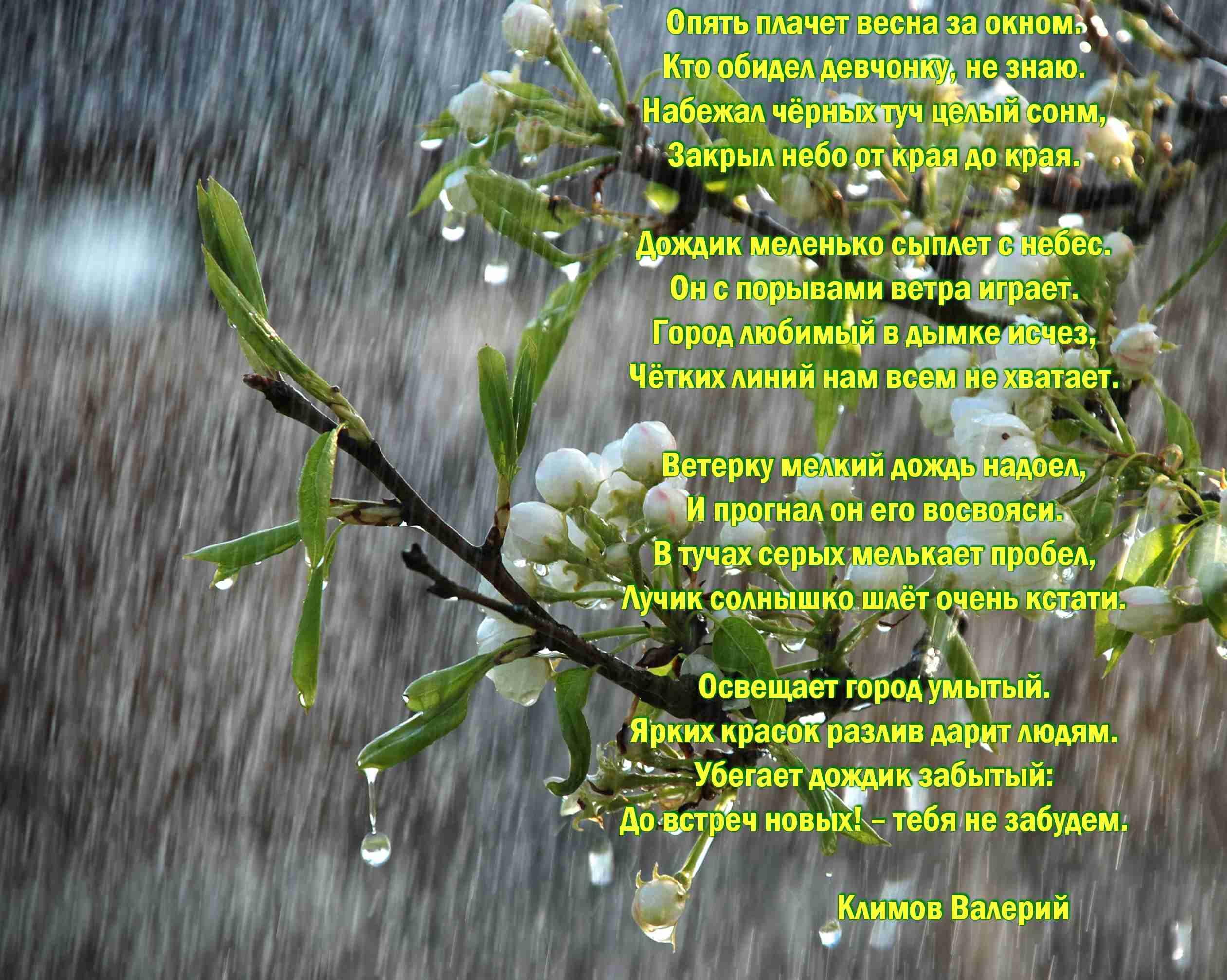 Веточка весенняя стихи