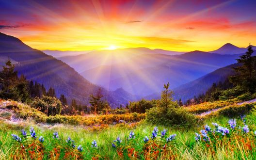 солнце картинки на рабочий стол № 509052 загрузить