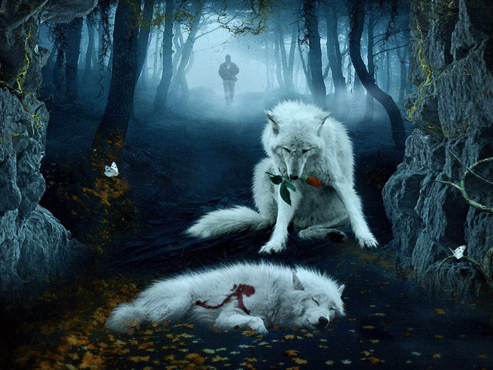 Фото девушка волк одиночка
