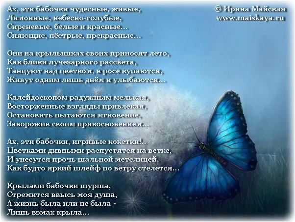 Взмах крыла стих