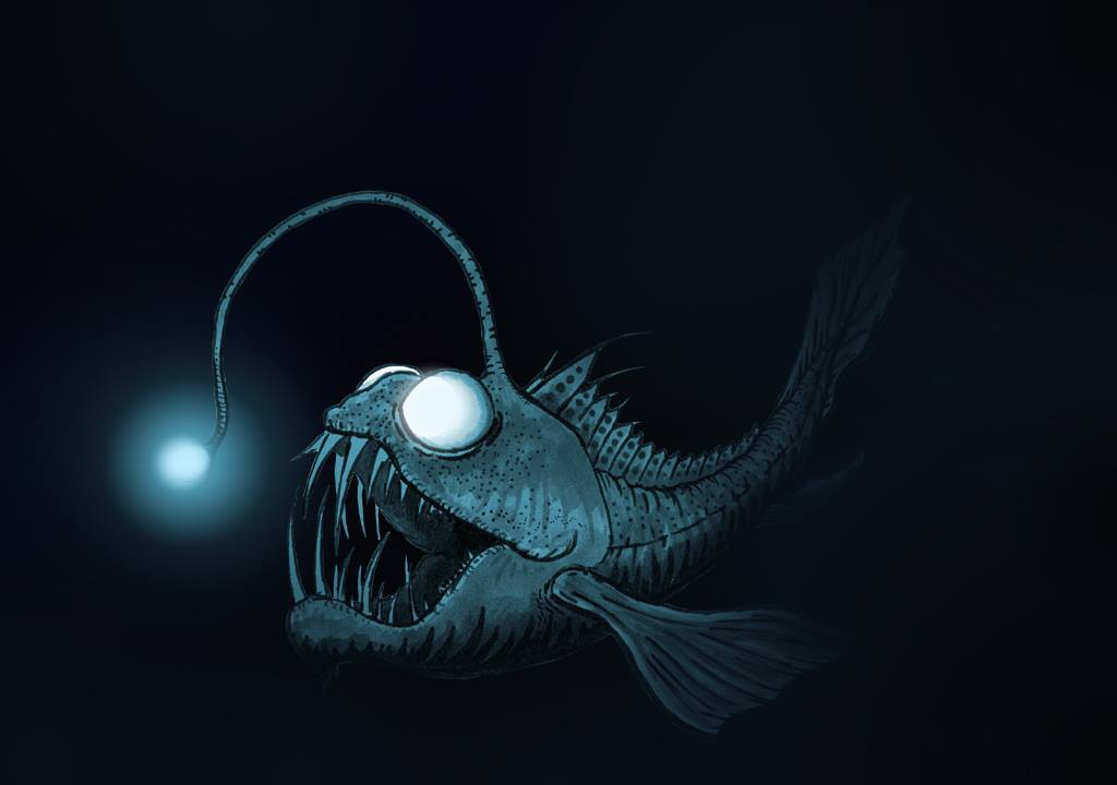deep sea creatures adaptations