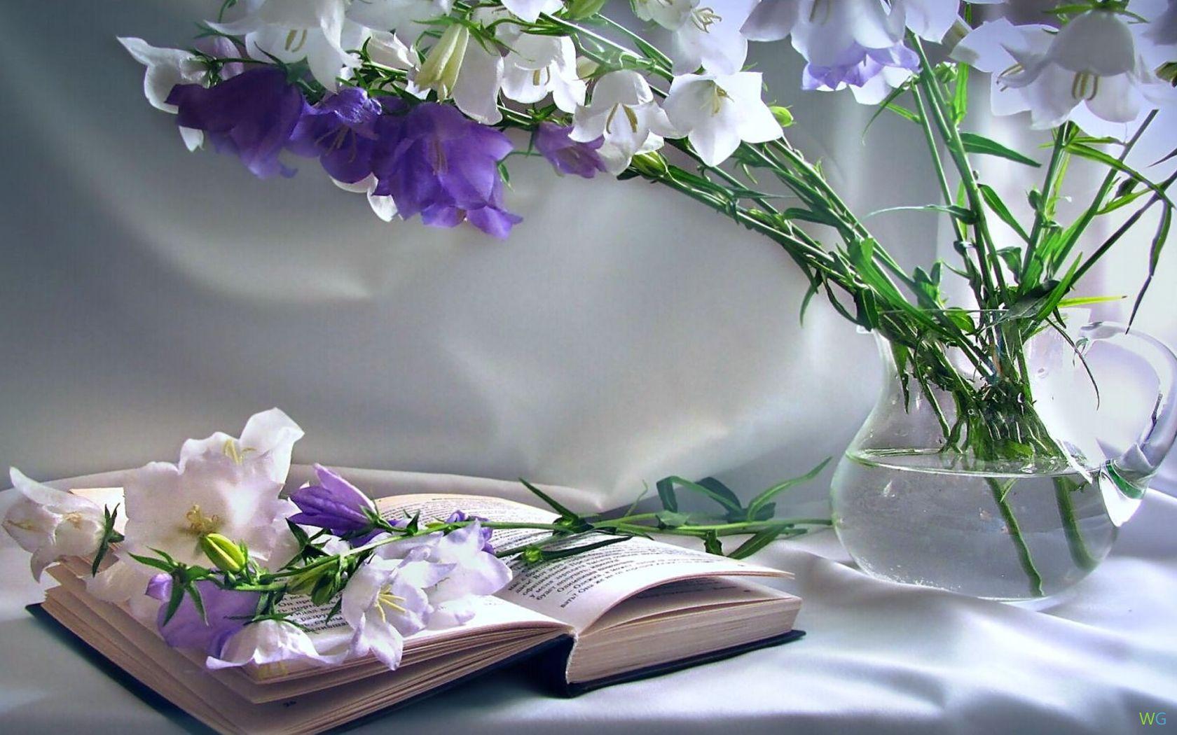 обои на рабочий стол цветы книги № 648768 без смс
