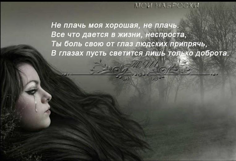 Стих не плачь я плакать не любил