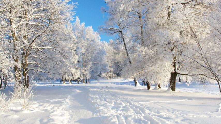 Бесплатные картинки на рабочий стол зима