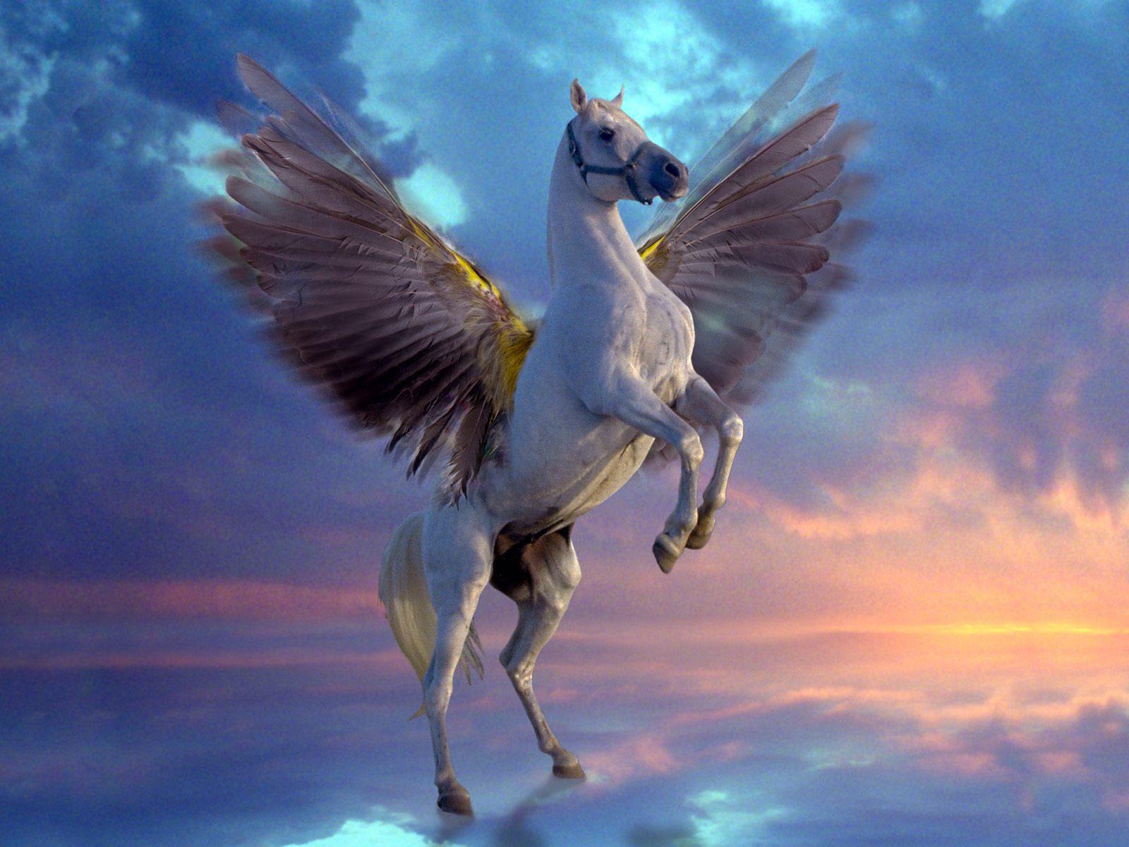 Картинки с лошадями пегасом