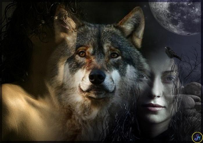 Смешных сладостей, картинки одинокой женщины волчицы