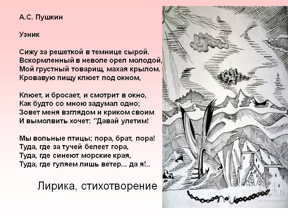 Кому посвятил пушкин стих узник