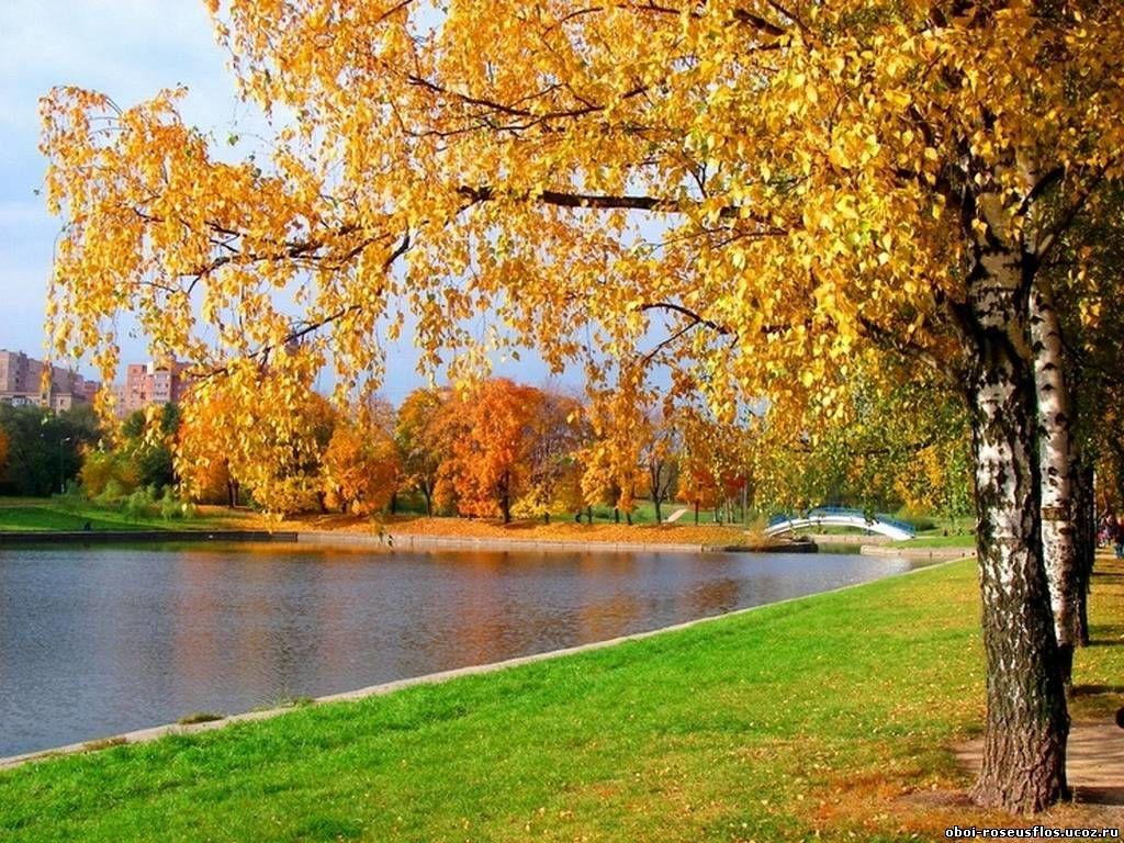 Картинки ранняя осень сентябрь