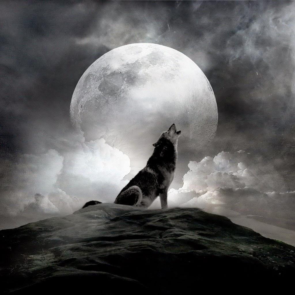 Огненный волк картинки минусы были
