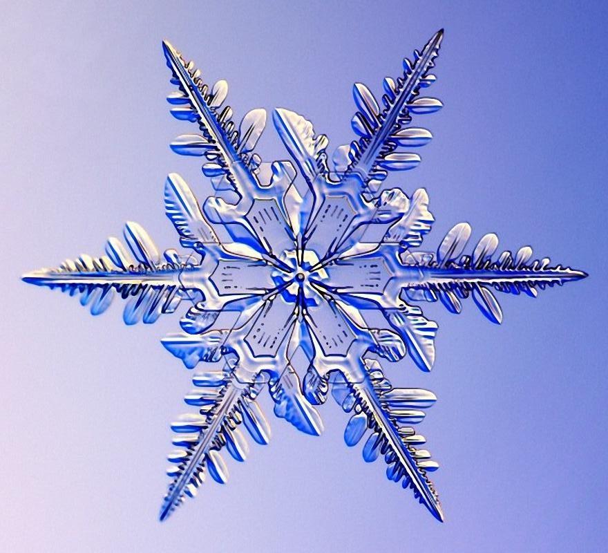 Почему снежинку назвали снежинкой