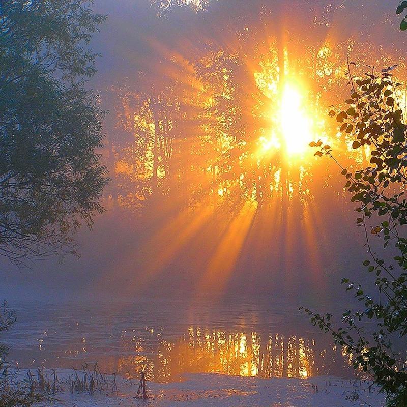 как солнце весне помогало фото всю жизнь, месяцок-другой