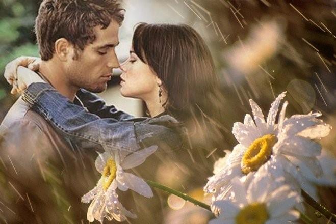 Картинки он иона нежность, цветы каллы красивые