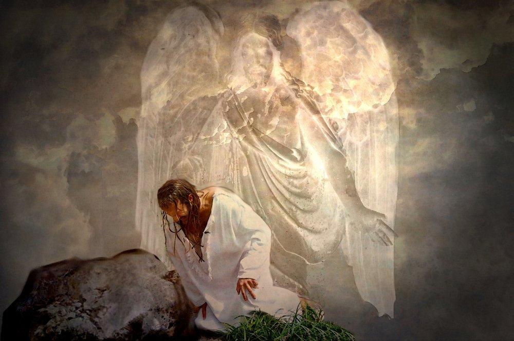 родители ангел спаситель фото вот
