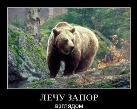 Буква м медведь