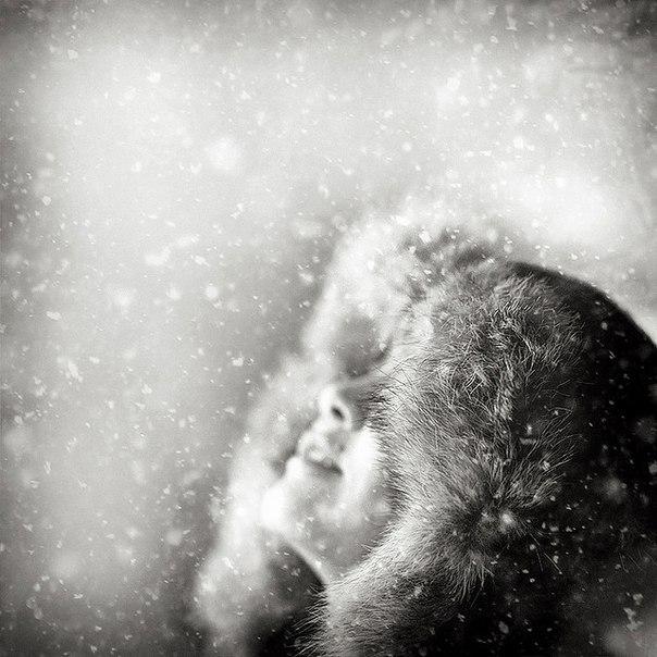ловить снег губами