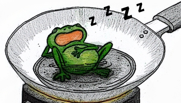 boiling frog theory Boiling frog theory: when gradual change is better 1 it is premised on a situation that when you place a frog in boiling water, it will surely jump out.