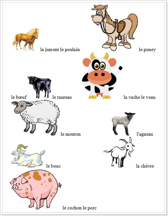 Полный список домашних животных. Алфавит детский )(Микола-Стихоплёт 5368