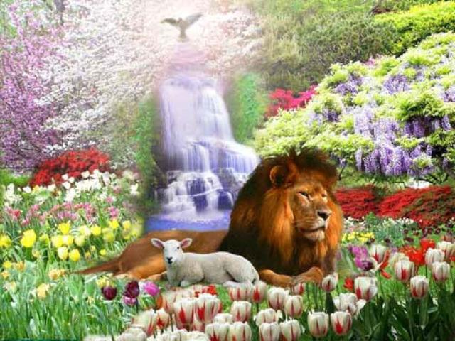 новая я в раю на земле Смоленщина