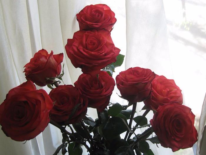 Букеты цветов реальные на окне