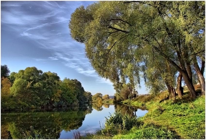 фото тополя на берегу реки украшен праздничной